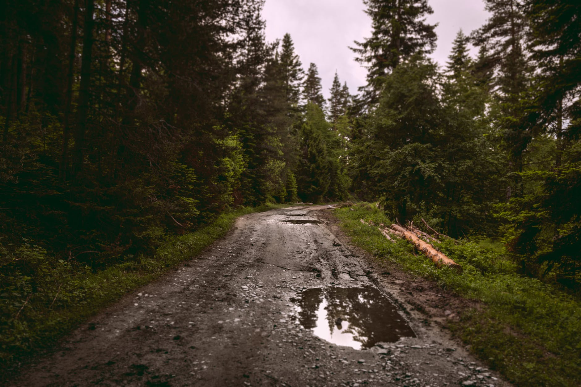 narrow road with puddles after rain